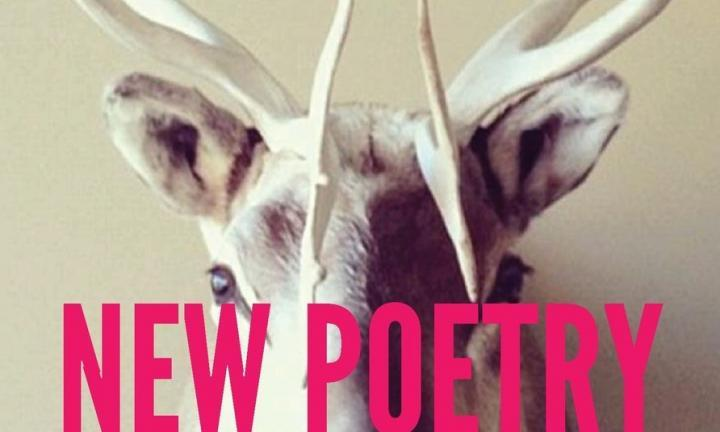 New Poetry from the Midwest Reading Madison WI